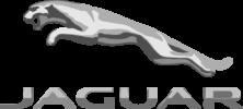 jaguar (Klein)